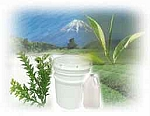 Green Tea & Tea Tree Lotion 1 Gallon