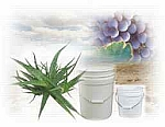 Aloe Basic Cream 5 Gallons