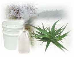 Aloe Basic Lotion 1 Gallon