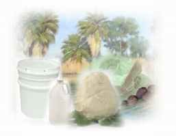 Shea Butter Lotion 1 Gallon