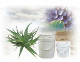 Aloe Basic Cream 1 Gallon